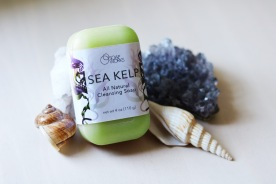 """Soap Works"" Sea Kelp Soap Package Concept"