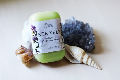 """Soap Works"" Sea Kelp Soap Package Concept"