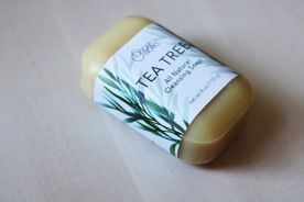 """""""Soap Works"""" Tea Tree Soap Package Concept"""